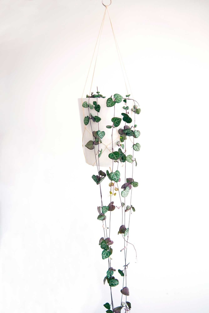 Chain of Hearts Hanging Planters